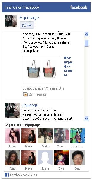 Полный вид Виджета на фейсбуке