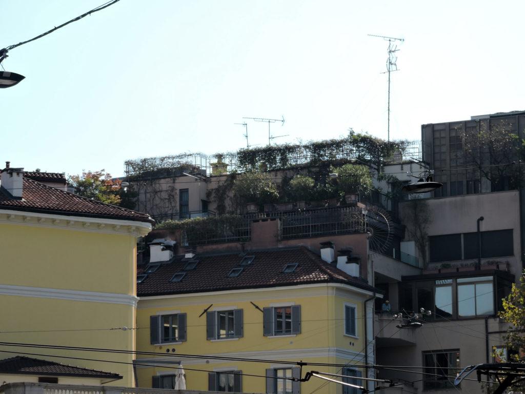 Сад в Милане